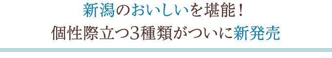 新潟の特産食材を使ったオリジナル焼き菓子「TOKKA」できました!