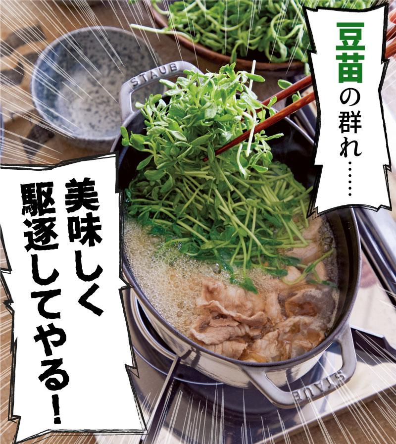 【豆苗まみれしょうゆ鍋】豆苗の群れ…美味しく駆逐してやる!