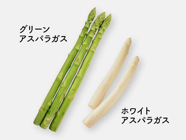 グリーンアスパラガスとホワイトアスパラガス