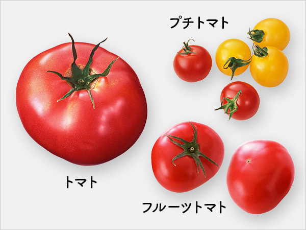トマト、フルーツトマト、プチトマト