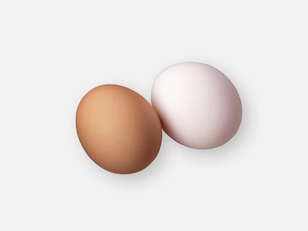 卵の赤玉と白玉
