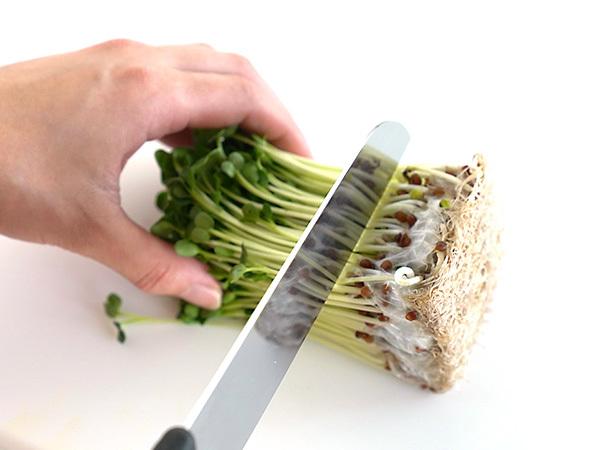 貝割れ菜の根元を切る