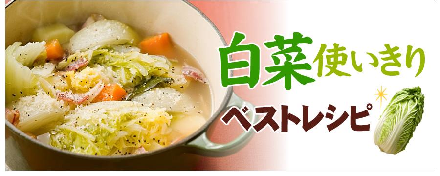 白菜使い切りベストレシピ